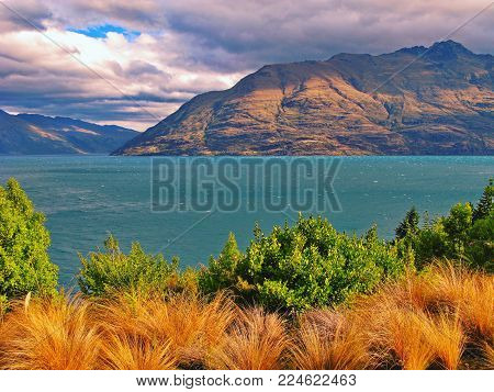 Beautiful New Zealand South Island landscape including grasses, sea, mountains.Panorama landscape from the South Island of New Zealand. Brown and green grasses and bushes in the foreground, calm blue water with layered mountains in the background covered