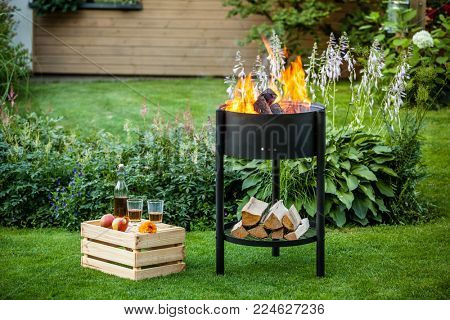 Fire pit in the summer garden.
