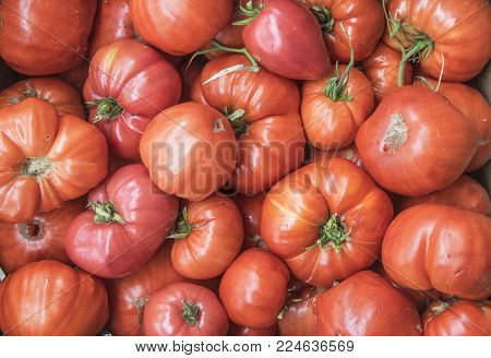 A group of fresh red tomatoes, full frame.