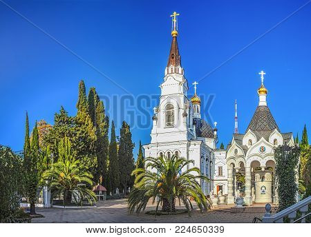 Palm trees on the territory of the Cathedral of St. Michael the Archangel. Sochi, Russia