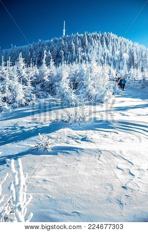 Lysa hora hill with snow,hiking trail, frozen forest and clear sky in Moravskoslezske Beskydy mountains in Czech republic during freezing winter day