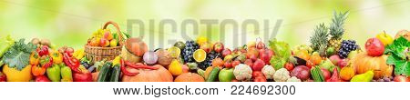 Panorama fruits and vegetables on background green blurred background with beautiful bokeh. Copy space