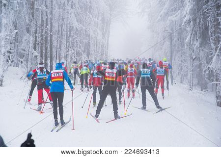 Professional nordic ski race, cross country skiing in white winter nature