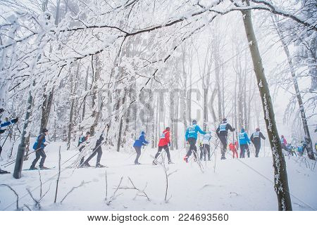 Cross Country Skiing, Professional Race, White Snow Winter Nature, Sport Photo, Edit Space