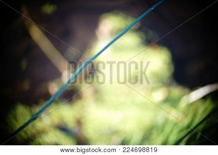 The shaky mesh and the wire of a chain link fence.