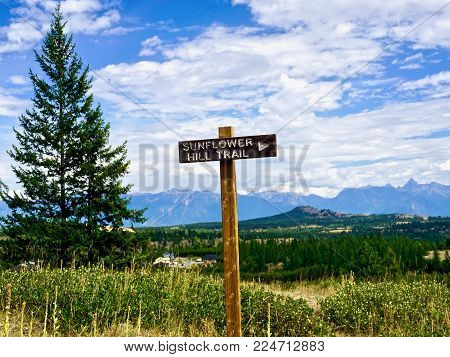 Sunflower Hill Trail signpost in front of mountain scenery