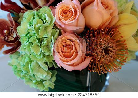 Bouquet of flowers including roses, orchids, pincushion proteas and hydrangea flowers in bright colors including orange, green, yellow and pink