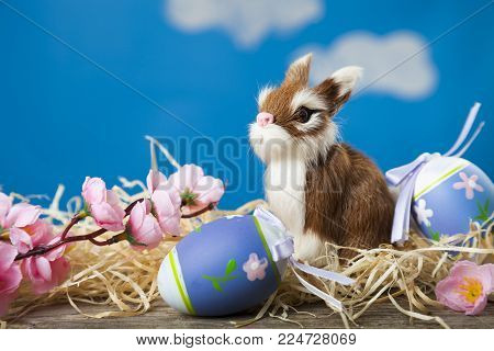 Easter Greeting Card.