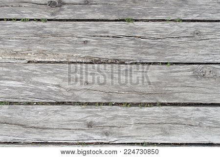 old wooden background of several faded oak boards with wide slits and grass, a front view