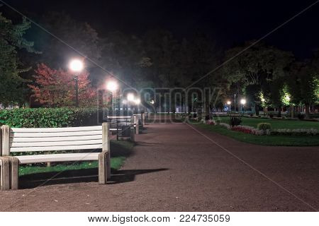The flowers are blooming in the dark autumn night at the Kadriorg park in Tallinn, Estonia. The benches are inviting visitors to enjoy the cozy feeling of the park.