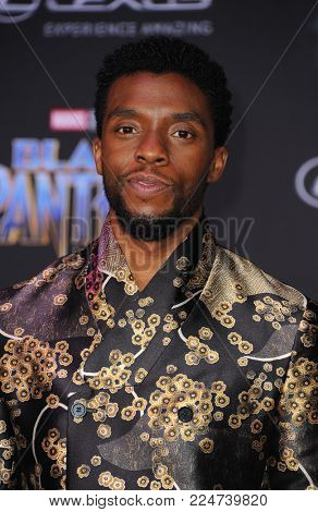Chadwick Boseman at the World premiere of Marvel's 'Black Panther' held at the El Capitan Theatre in Hollywood, USA on January 29, 2018.