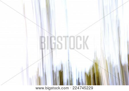Horizontal background image of photo technique called 'panning' in colors of white,green and brown.