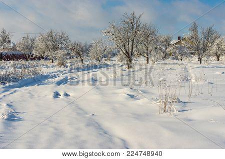 Pure winter landscape in Ukrainian village Novoaleksandrivka near Dnipro city
