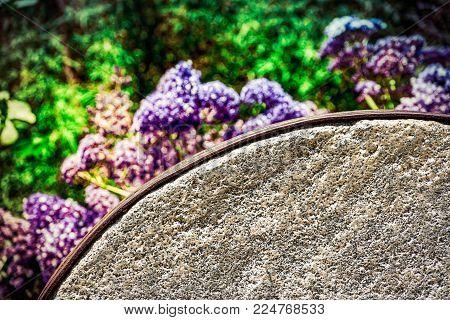 A mill stone sitting out at a southern California garden.