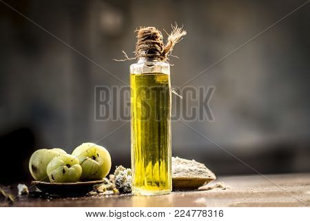 Raw Fresh Ripe Phyllanthus Emblica,amla Or Indian Gooseberry With Its Powder And Extracted Oil On Wo