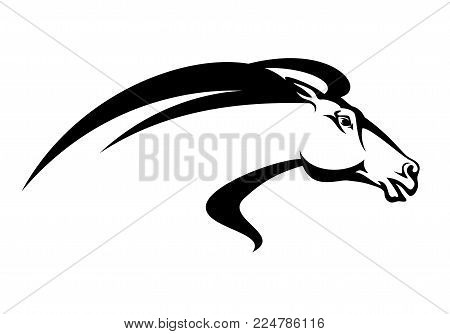 running horse head profile - black and white equine vector design poster