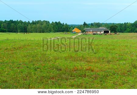 rural landscape, countryside, rural home environment growth