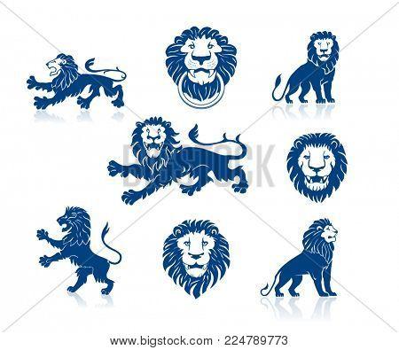 A Set of Lions Illustrations