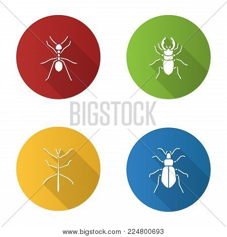 Insects flat design long shadow glyph icons set. Ant, stag beetle, ground bug, phasmid. Vector silhouette illustration