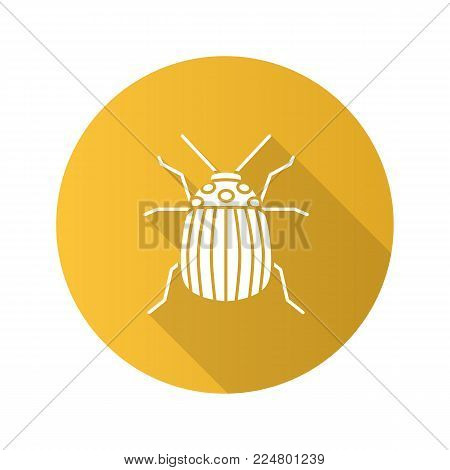 Colorado beetle flat design long shadow glyph icon. Insect pest. Potato bug. Vector silhouette illustration