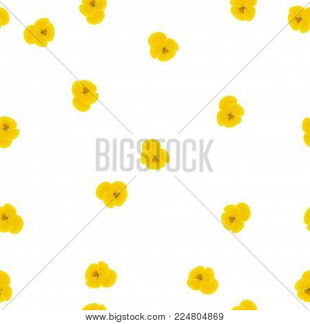 Seamless floral pattern small yellow Pansies flowers isolated on white background, vector, eps 10