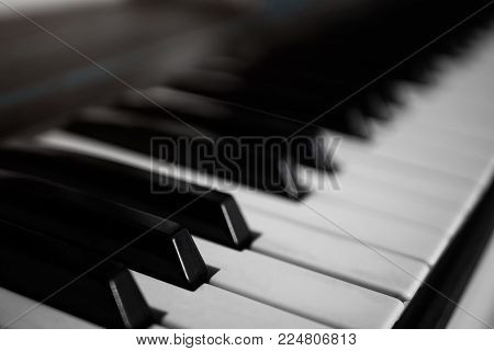 White and black keys of the piano synthesizer