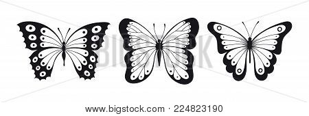 Set of black and white butterfly sillhouettes isolated on white background, set of icons