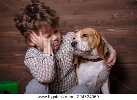 cute European boy and the dog breed Beagle in the arms. loyal friend