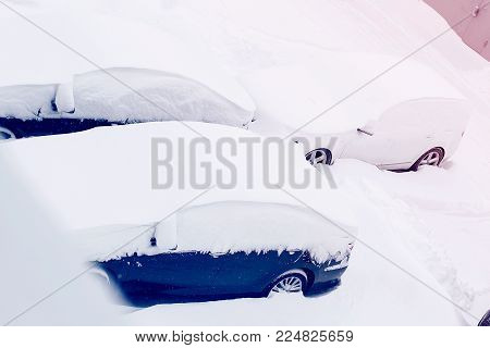Row of parked cars covered with snow in the sunlight