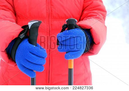 Human in red sport jacket and blue gloves holds two Sticks for Nordic Hiking in winter season on snow background close up