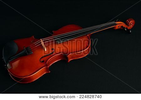 Classical brown violin. Four string musical instrument violin isolated on black background, close-up. Violin strings and bridge, top view