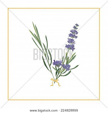 Letter V monogram. Retro sign alphabet with lavender flower initial. Watercolor style, botanical illustration isolated on white. Vintage vector font typeface