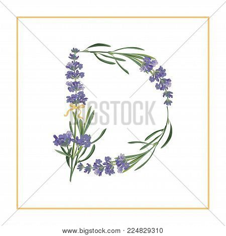 Letter D monogram. Retro sign alphabet with lavender flower initial. Watercolor style, botanical illustration isolated on white. Vintage vector font typeface