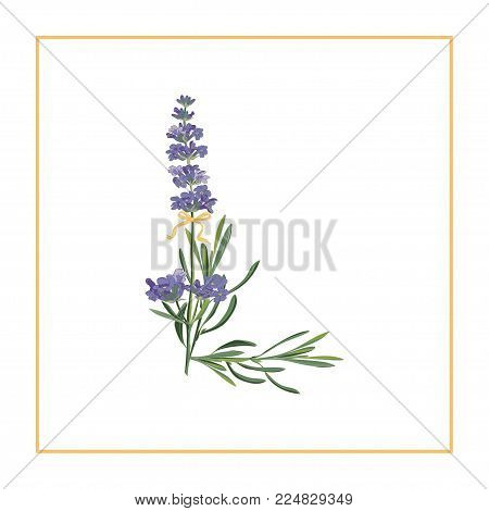 Letter L monogram. Retro sign alphabet with lavender flower initial. Watercolor style, botanical illustration isolated on white. Vintage vector font typeface