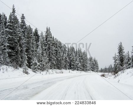 The snowy road 93 Icefield Parkway in Winter Jasper National park, Canada
