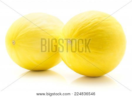 Two yellow honeydew melons isolated on white background