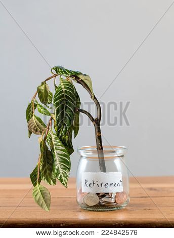 Loose change and coins inside a glass jar with dying plant to represent lack of retirement investment