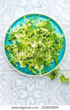 Frize lettuce salad, fresh frisee. Healthy vegetarian food