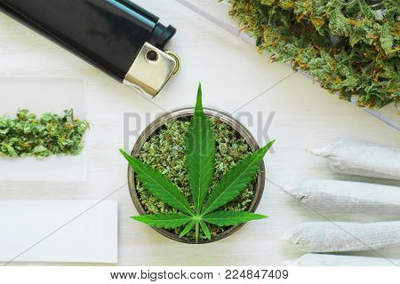 Sticky buds of marijuana flowers with cannabis trihoma, cannabis leaf, the concept of medical use THC and CBD