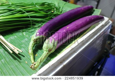 eggplant or purple eggplant and vegetable foe sell
