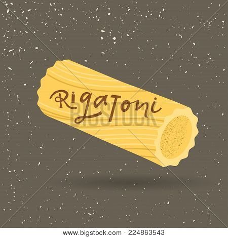 Vector illustration of pasta. Rigatoni with lettering on a gray background. For trendy packaging, advertising, menu design.