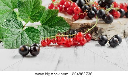 Redcurrants In Bucket Over White Wooden Background