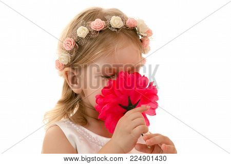 little girl smelling a flower isolated on white