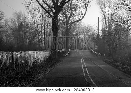 A black and white look at this country road in Central New Jersey.