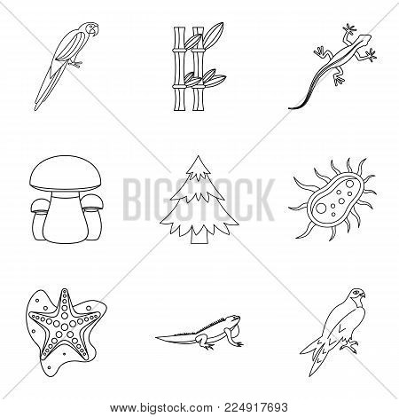 Enliven icons set. Outline set of 9 enliven vector icons for web isolated on white background