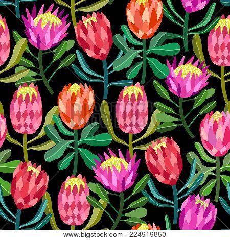 Protea flower vector seamless pattern on black
