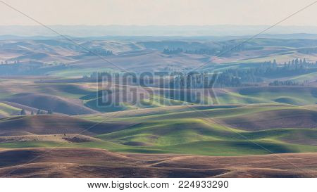 Spring Rolling Hills from Steptoe Butte in Haze, Washington