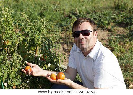 Man Poses Near Tomato Plants