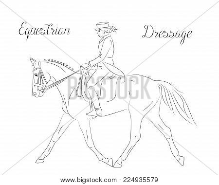 Dressage horse with rider performing quick trott, equestrian sport. Black and white vector image, side view picture. Female rider performing dressage movements.