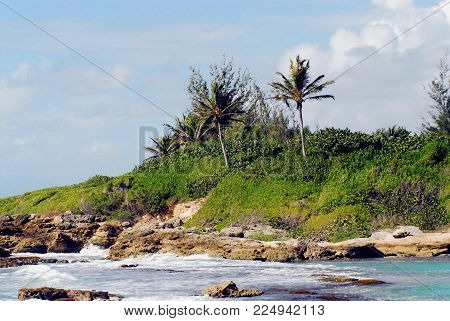 A quiet beach on the rugged coastline on the island of Guadeloupe in the Caribbean Sea